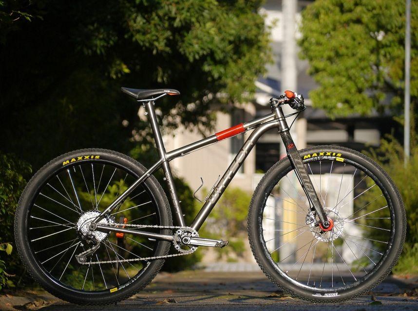 6a397e91646 wittson titanium 29er frame with rigid fork   Mountain bike fork ...