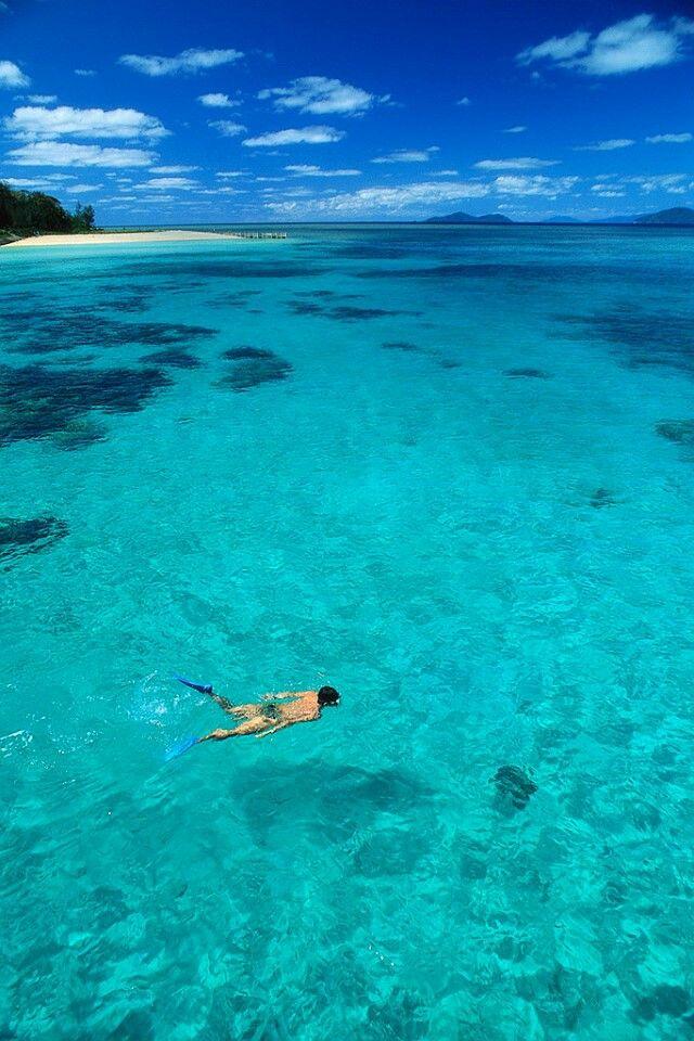 Snorkeling In Belize. #vacation #xoBelize