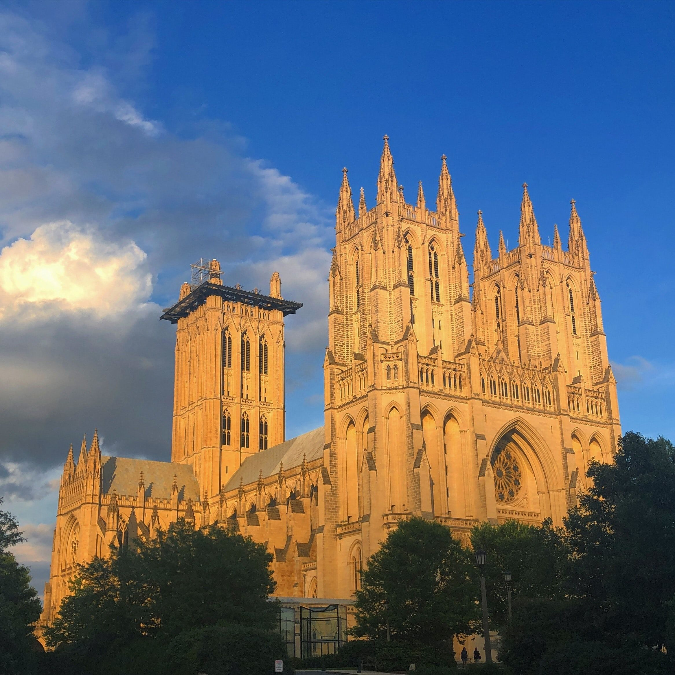Cathedrals In