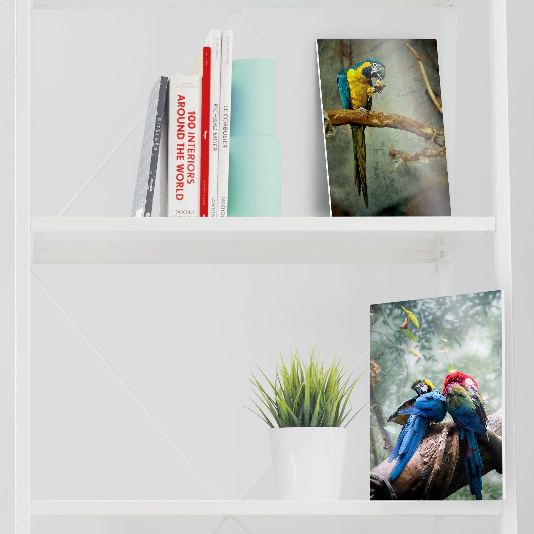 Que Vous Choisissiez Un Veritable Tirage Photo Sur Lambda Ou Une Impression Jet D Encre Pigmentaire Sur Papier Fine Art Nous C Carton Plume Carton Tirage Photo