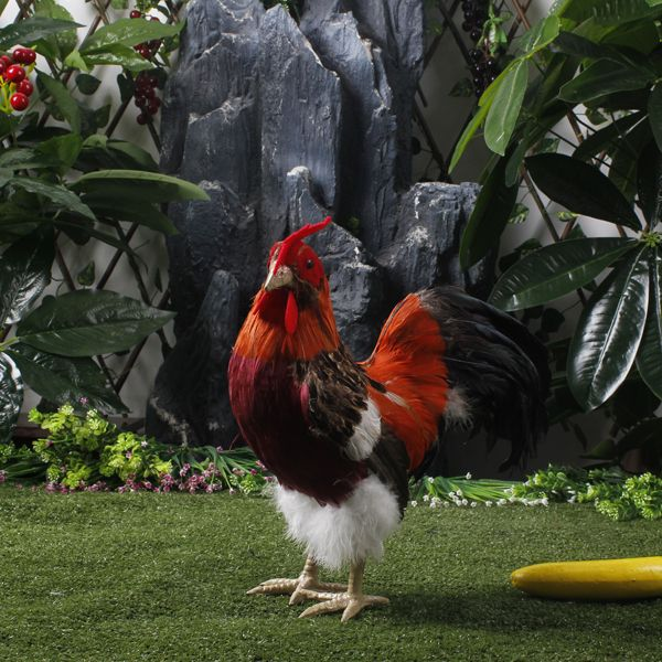 Simulation Garden Decorative Chicken Rooster Decorative Lifelike Poultry  Animals //Price: $US $20.97