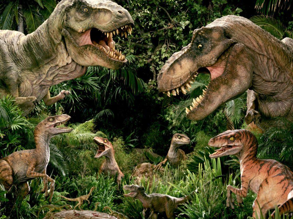 Related Image Dinossauros Aniversario Dinossauro Paineis Festa Este dinosaurio herbívoro y cuadrúpedo tenía filas de placas blindadas y ovaladas incrustadas en su piel. related image dinossauros
