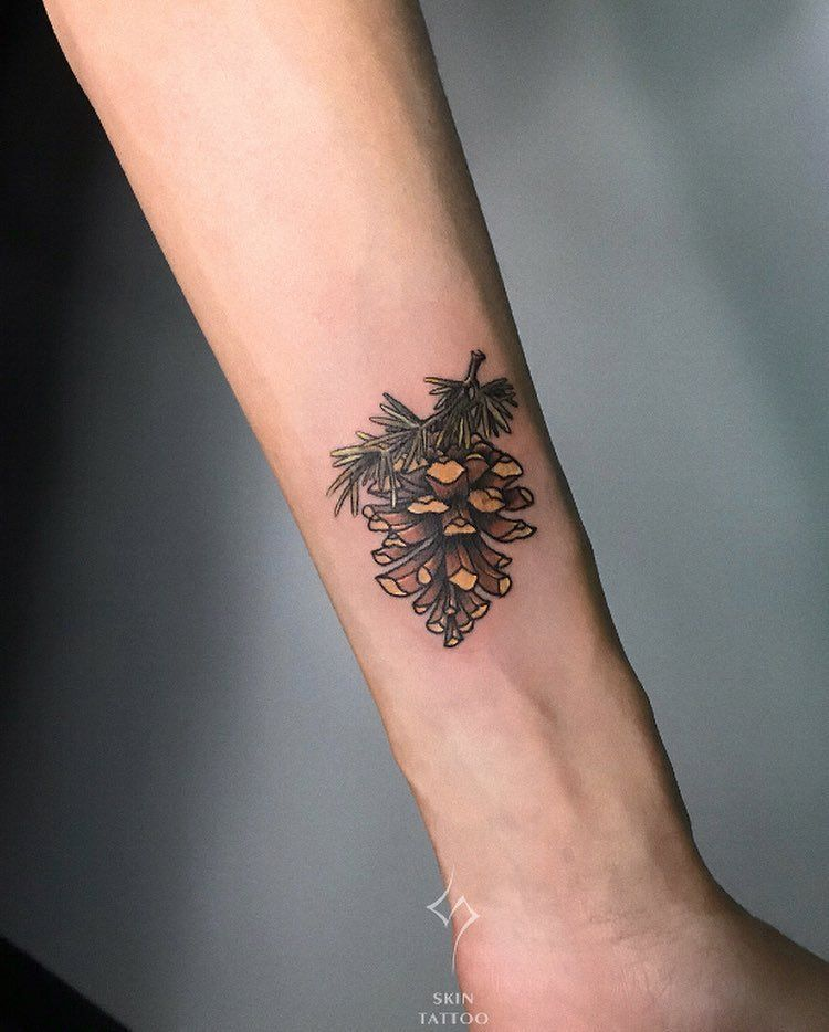 30 Pine Cone Tattoo Designs To Celebrate Beauty of Nature | TattooAdore