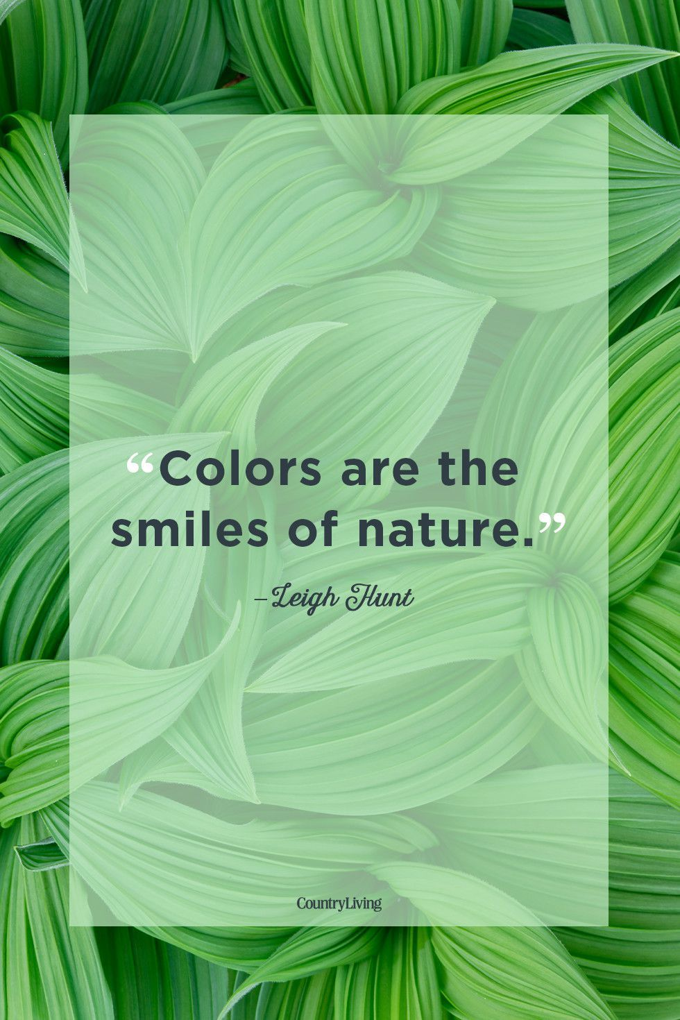 Beautiful Quotes About The Power Of Nature Nature Quotes Nature Quotes Inspirational Motivational Quotes For Life