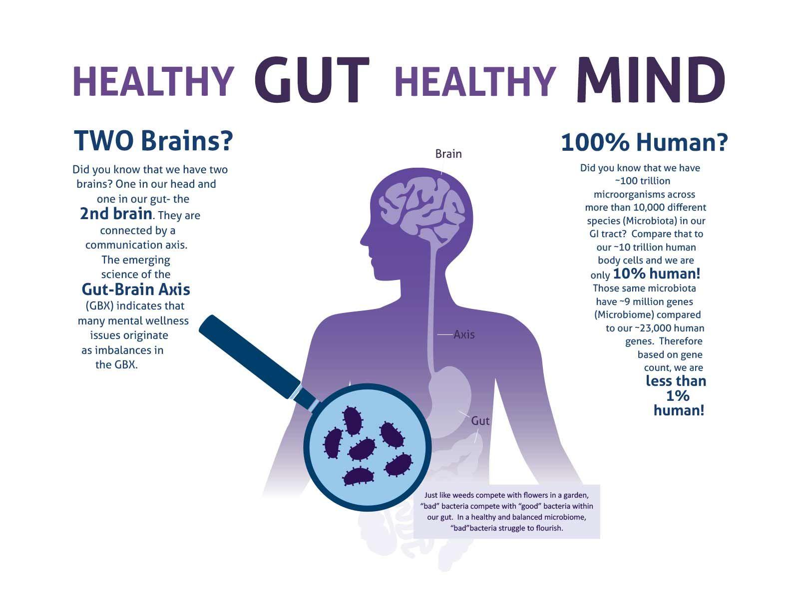 Amareglobal Healthy Gut Healthy Mind Amare Gut Brain Wellness