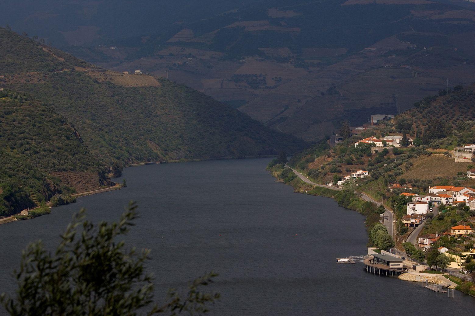 Muelle Fluvial y Turístico de Folgosa / Saraiva + Associados