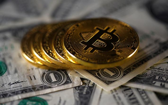 comércio forex fx crypto coin moeda digital