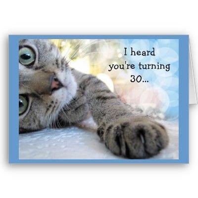 cat card love card gray tabby cat Love you card