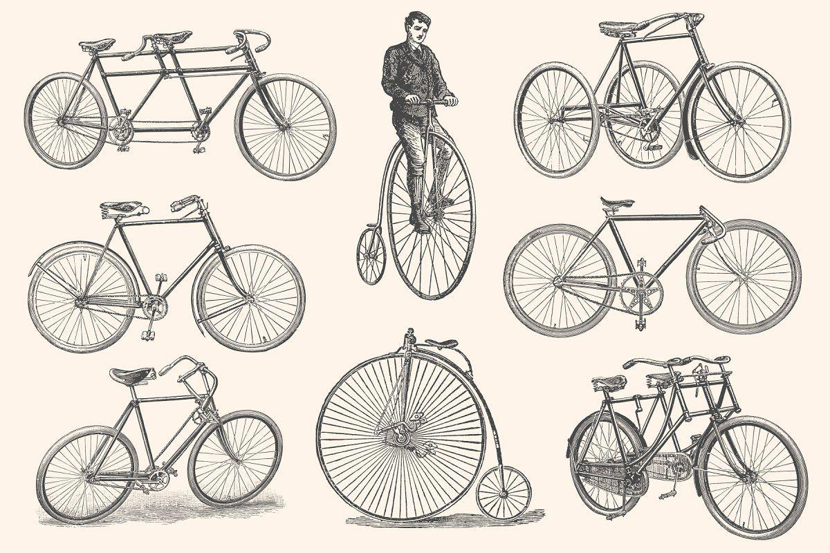 Bicycles Vintage Illustration Set Vintage Illustration Bicycle Types Vintage Bicycles
