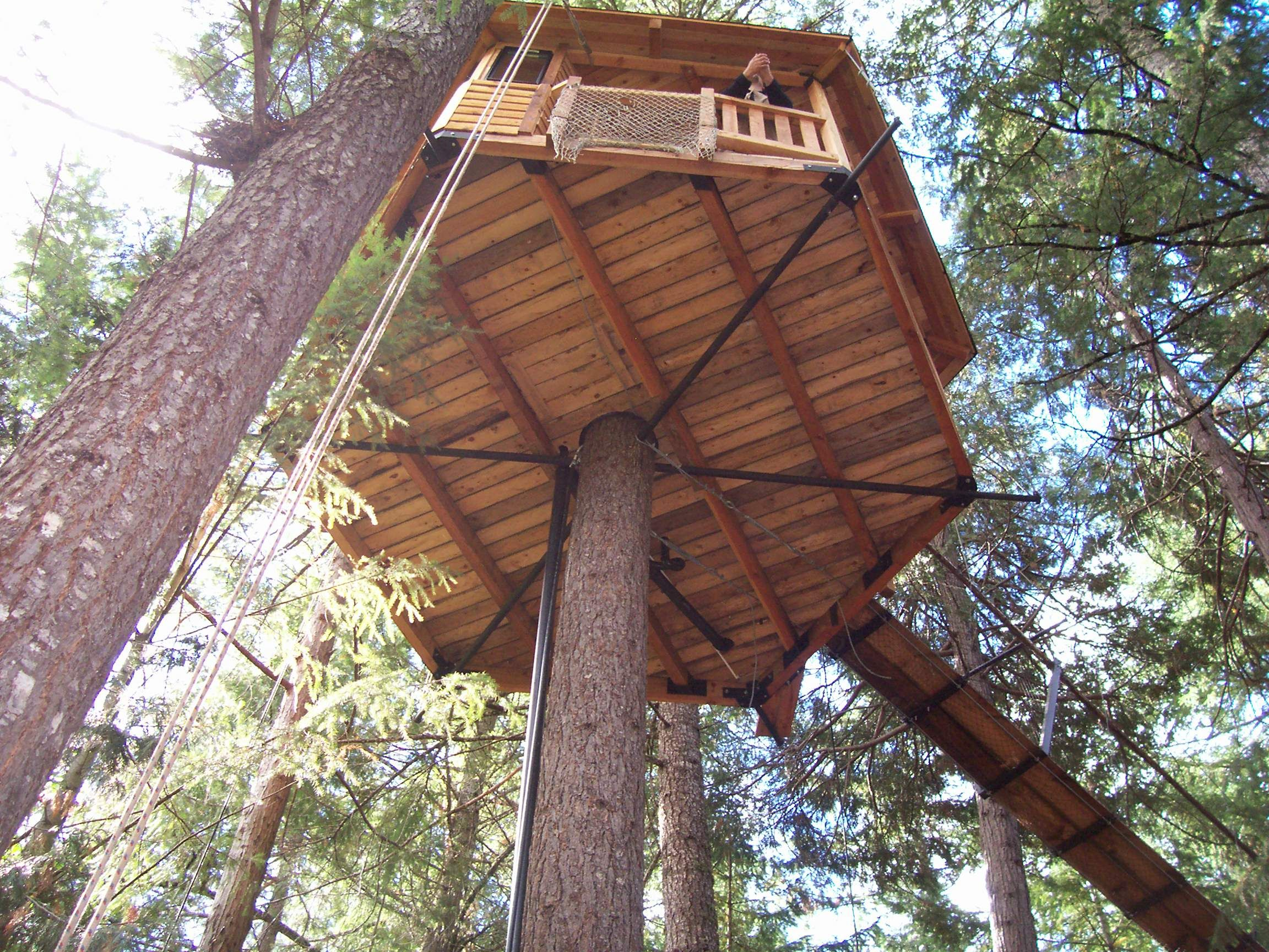 Diy tree stand plans - Cabin