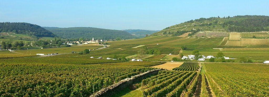 Vignoble de Monthélie, Hautes-Côtes de Beaune
