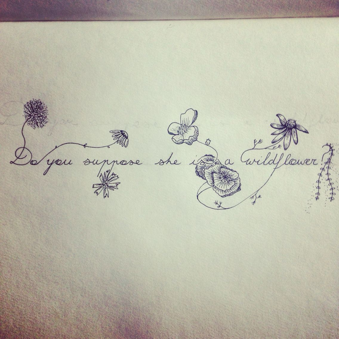 Do you suppose she is a wildflower? Quote by Lewis Carroll from Alice in Wonderland. Drawn out ...