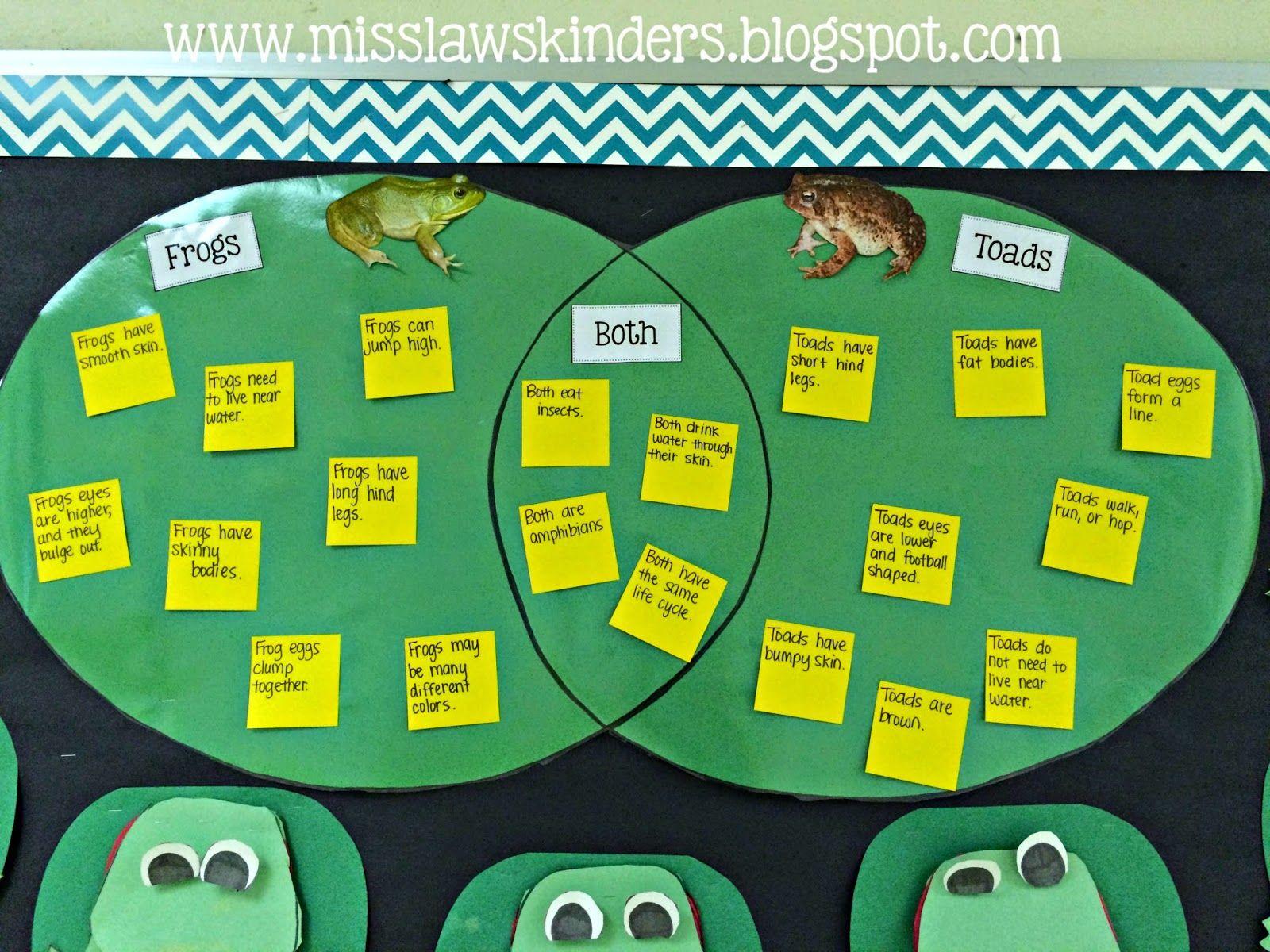 Frog And Toad Venn Diagram Chart