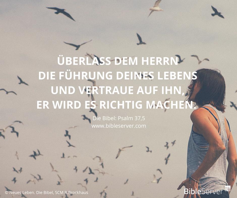 Lass Dich Von Gott An Die Hand Nehmen Der Spruch Des Tages Steht