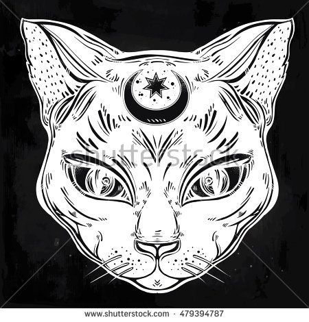 How To Take Care Of Your New Tattoo Cat Tattoo Art Cat Art