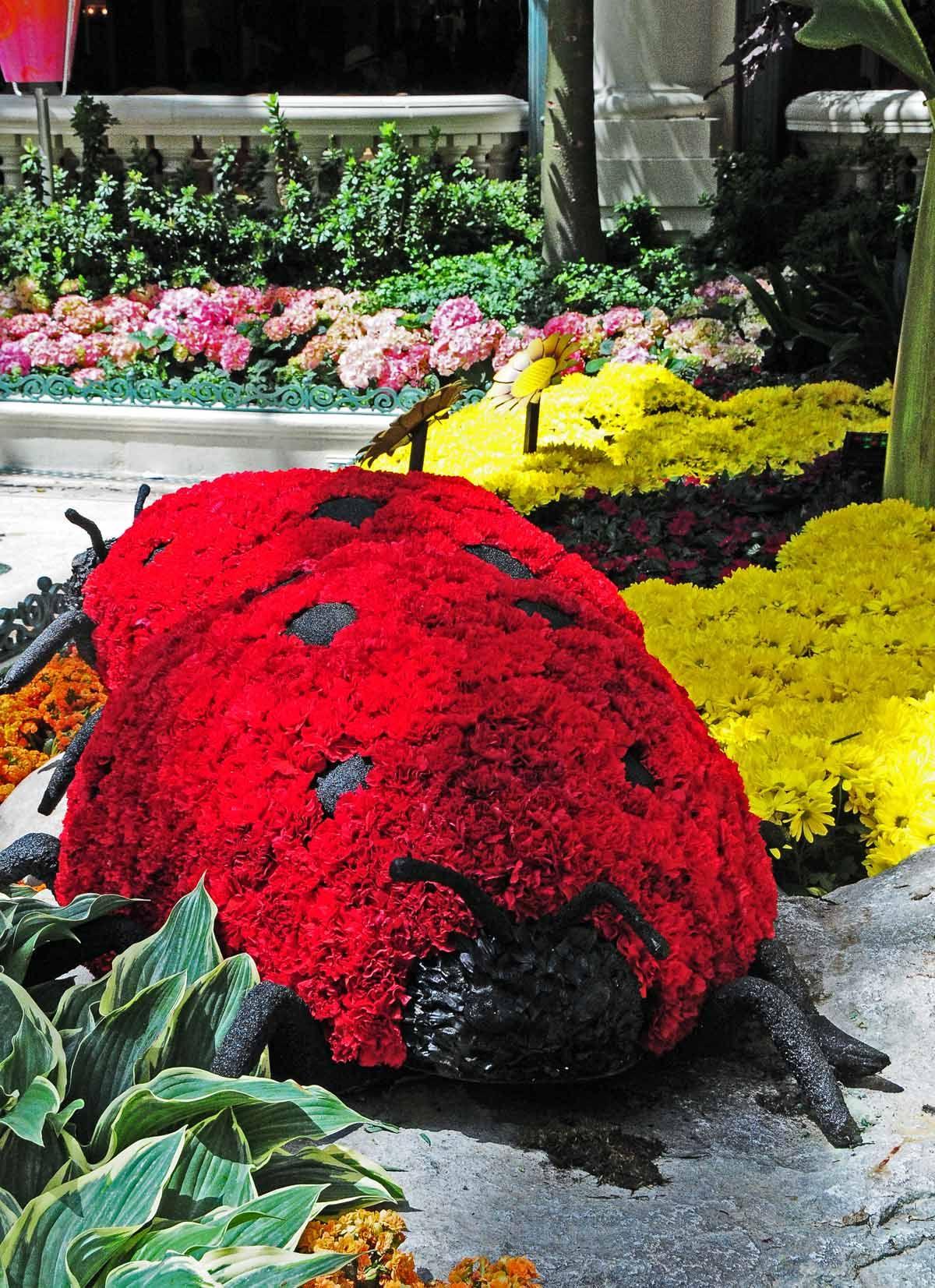 e696b3af1106c883c201fd1176ef58ab - Carmine's Florist Palm Beach Gardens