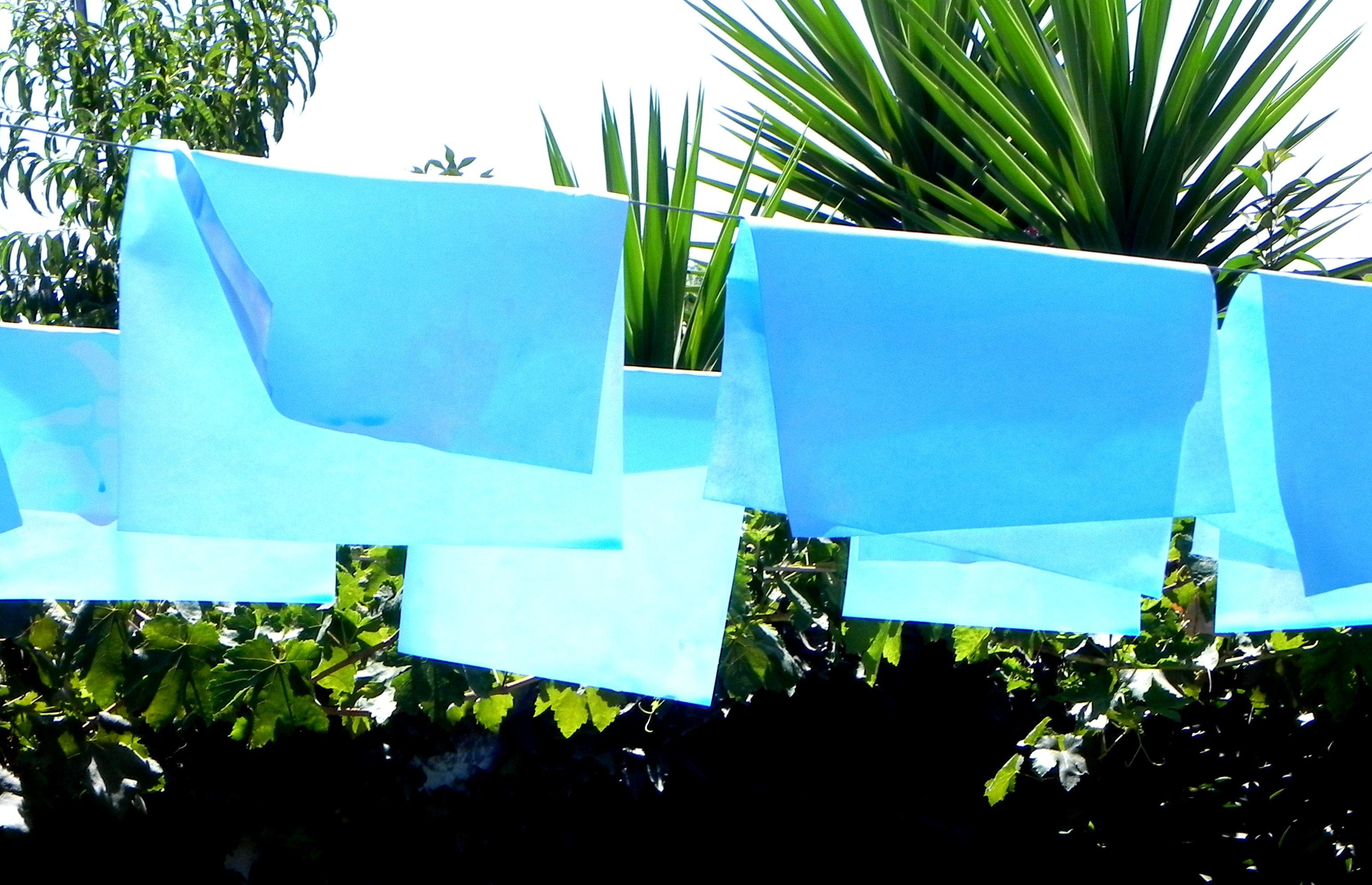 papel teñido a mano con tinta de impresora disuelta en agua  (secandose al sol)