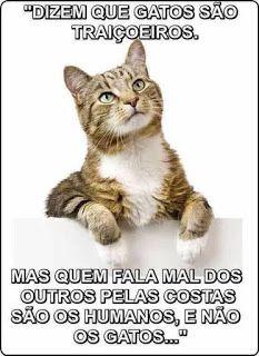 O Grito Do Bicho Domingo Dos Leitores 190217 Frases