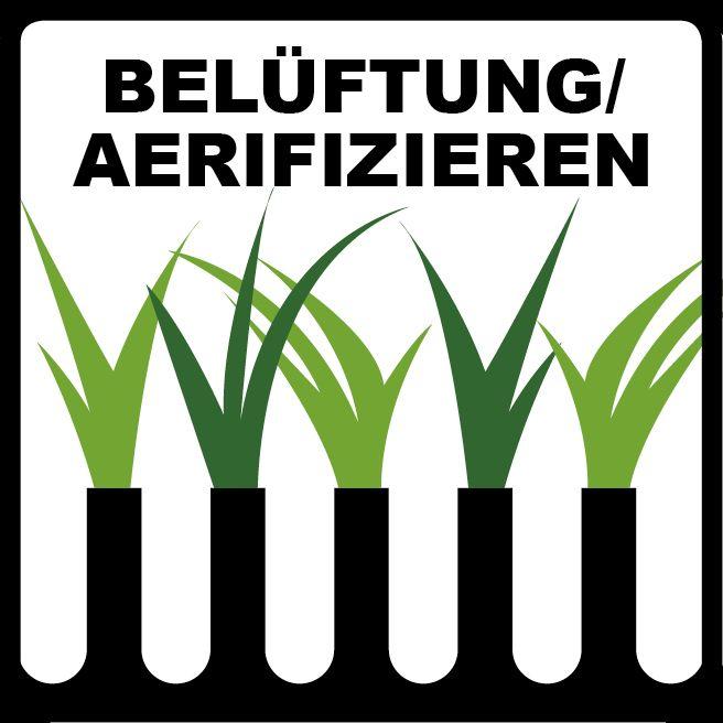 Amazing Rasen Bel ftung Aerifizieren Rasenbel fter lawn aeration