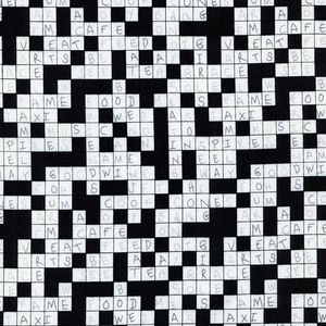 Timeless Treasures House Designer Adult Novelty Crossword In Black White Cotton Quilting Fabric Timeless Treasures Fabric Fabric