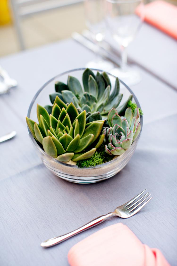 Diy déco avec des plantes succulentes en photos indoor