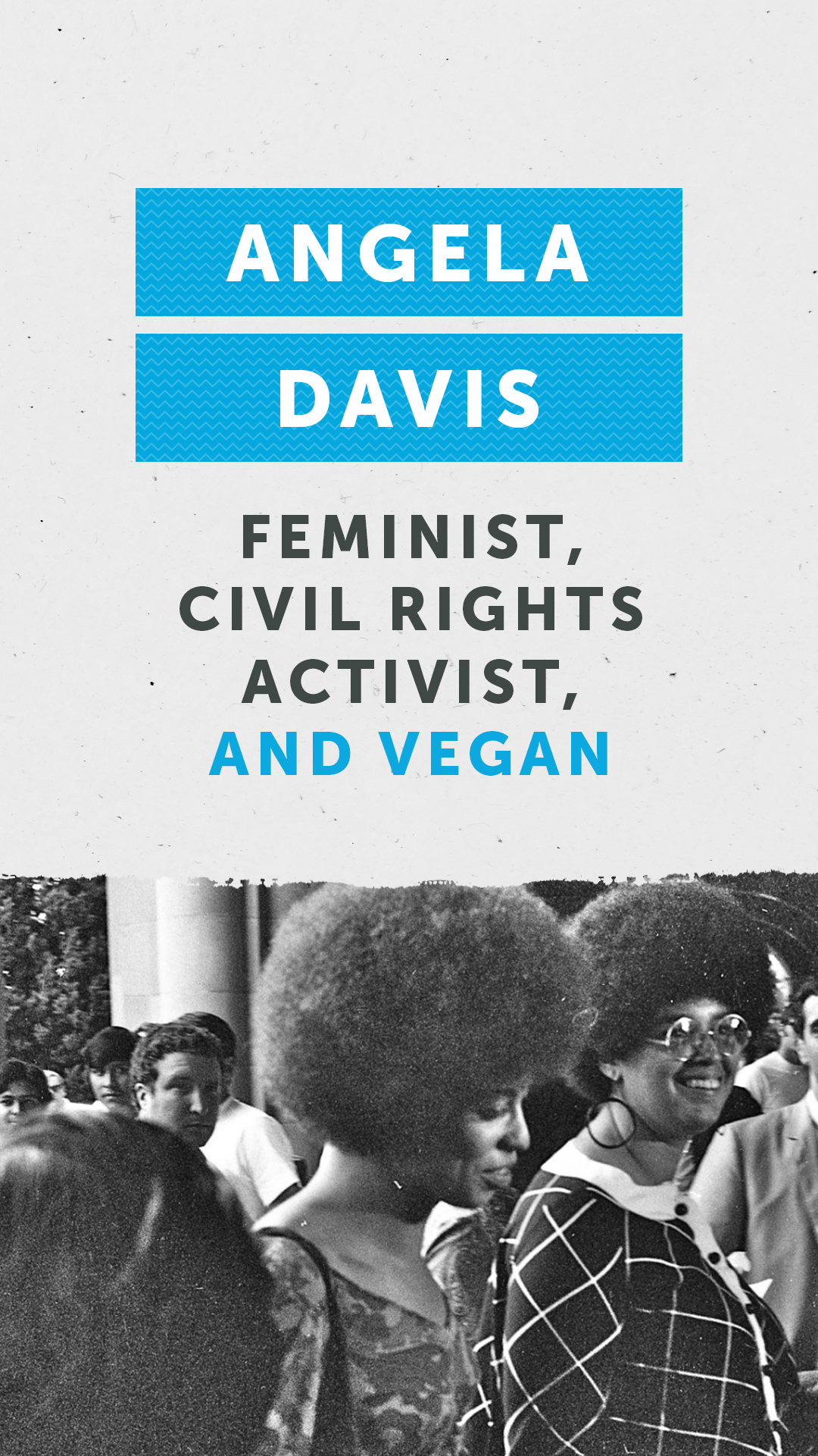 Angela Davis Feminist Civil Rights Activist And Vegan Civil Rights Activists Angela Davis Civil Rights