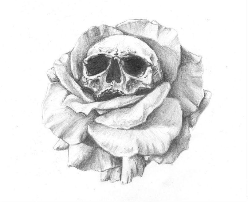 dessin artistique réaliste crane et rose