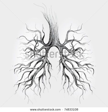 lungs sketch tree lungs of the earth realistic sketch stock vector 5107