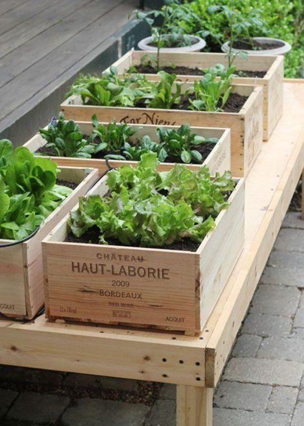créer un jardin sur son balcon