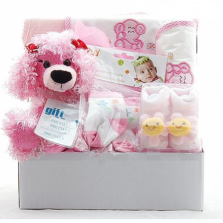 In The Pink Baby Gift Basket
