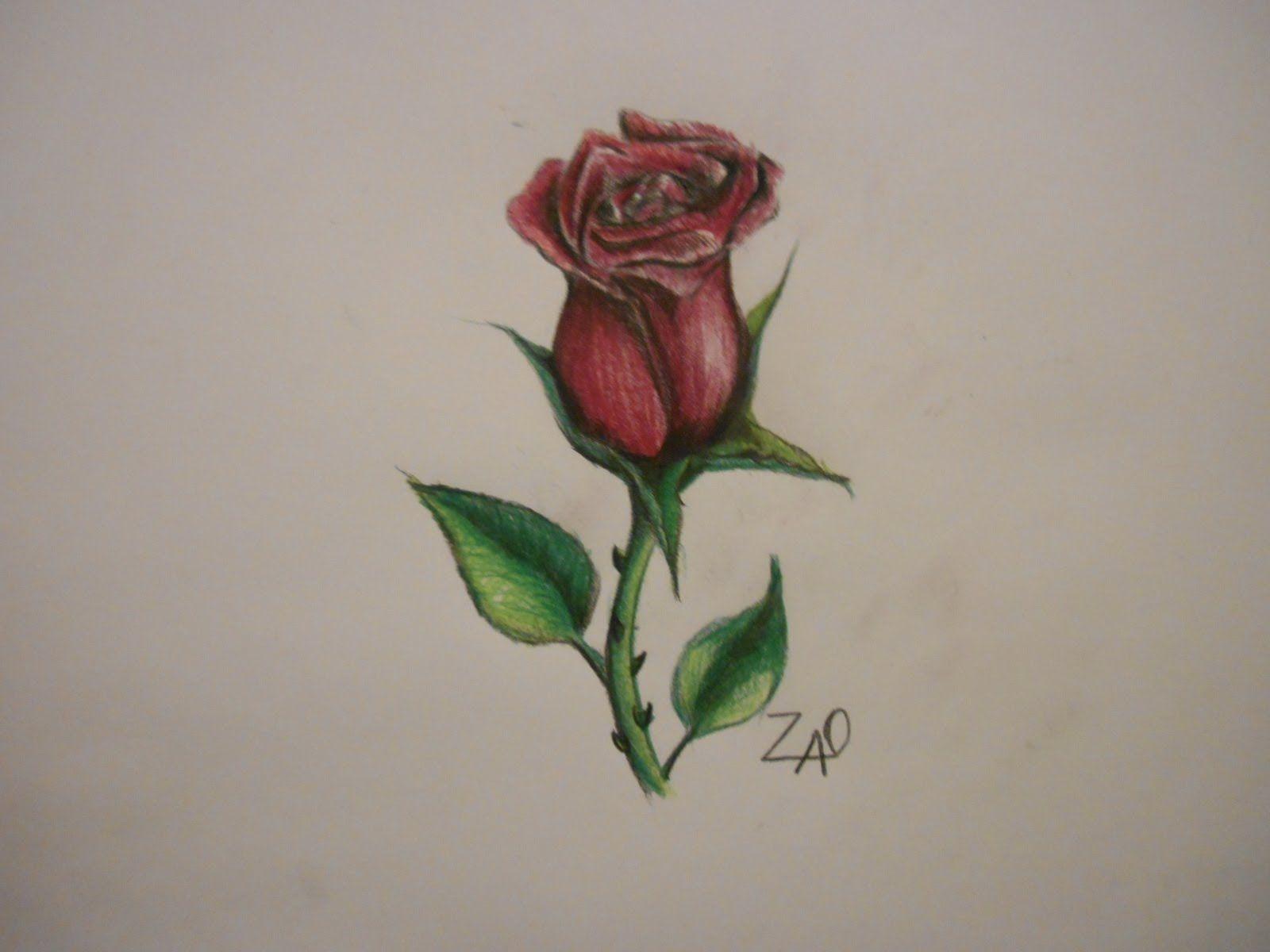 Imagenes De Como Dibujar Una Rosa
