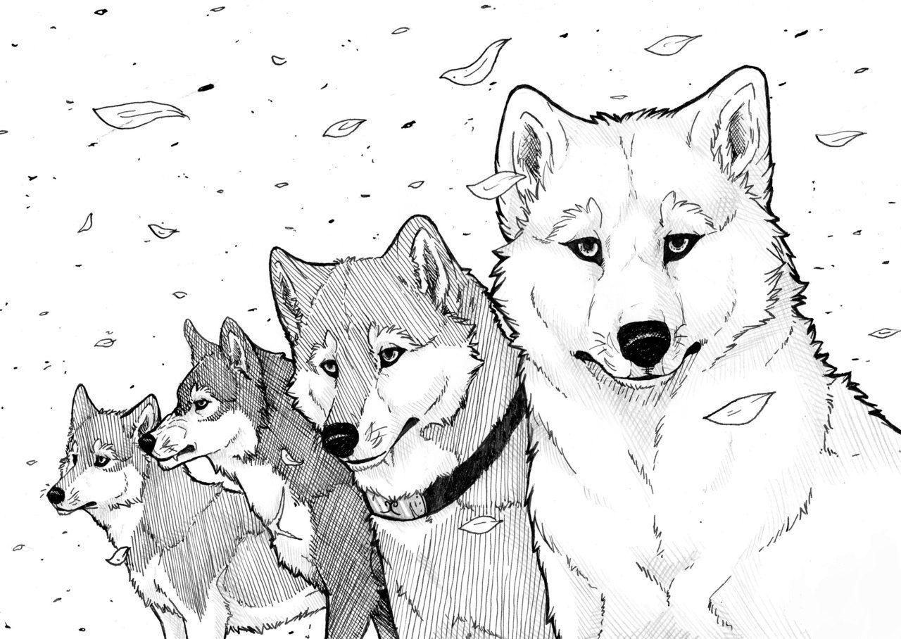 картинки для личного дневника волки поглощенная
