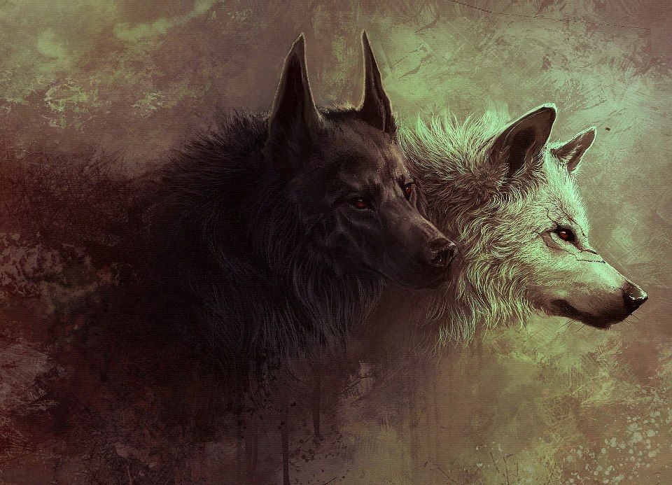 digital art timeline photos facebook アカオオカミ オオカミ 哺乳動物