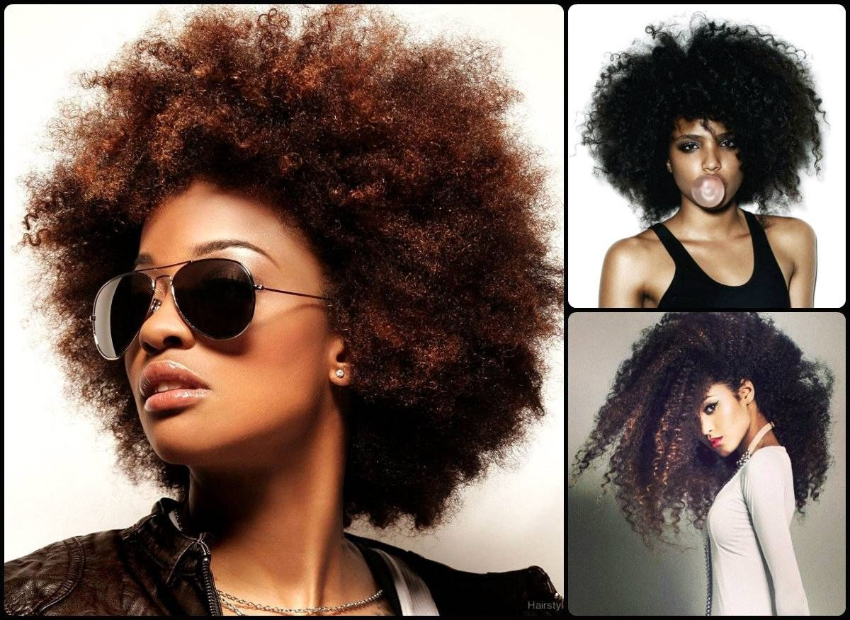 Best Modern Afro Hairstyle Womens Hairstyles Medium Hair Styles Afro Hairstyles