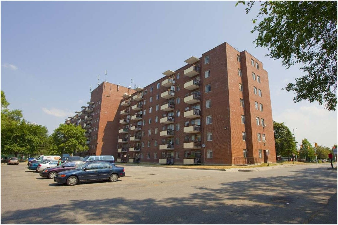 Charming Apartments For Rent Mississauga Morning Star Apartments From Kijiji  Mississauga Basement For Rent