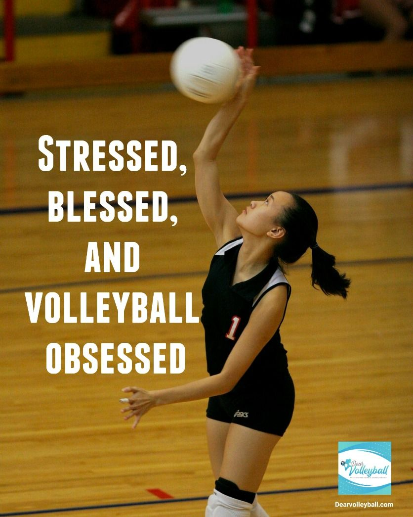 37 Volleyball Motivational Quotes From Famously Popular Coaches Offering Inspiration To Players Fans An Volleyball Quotes Short Inspirational Quotes Motivation