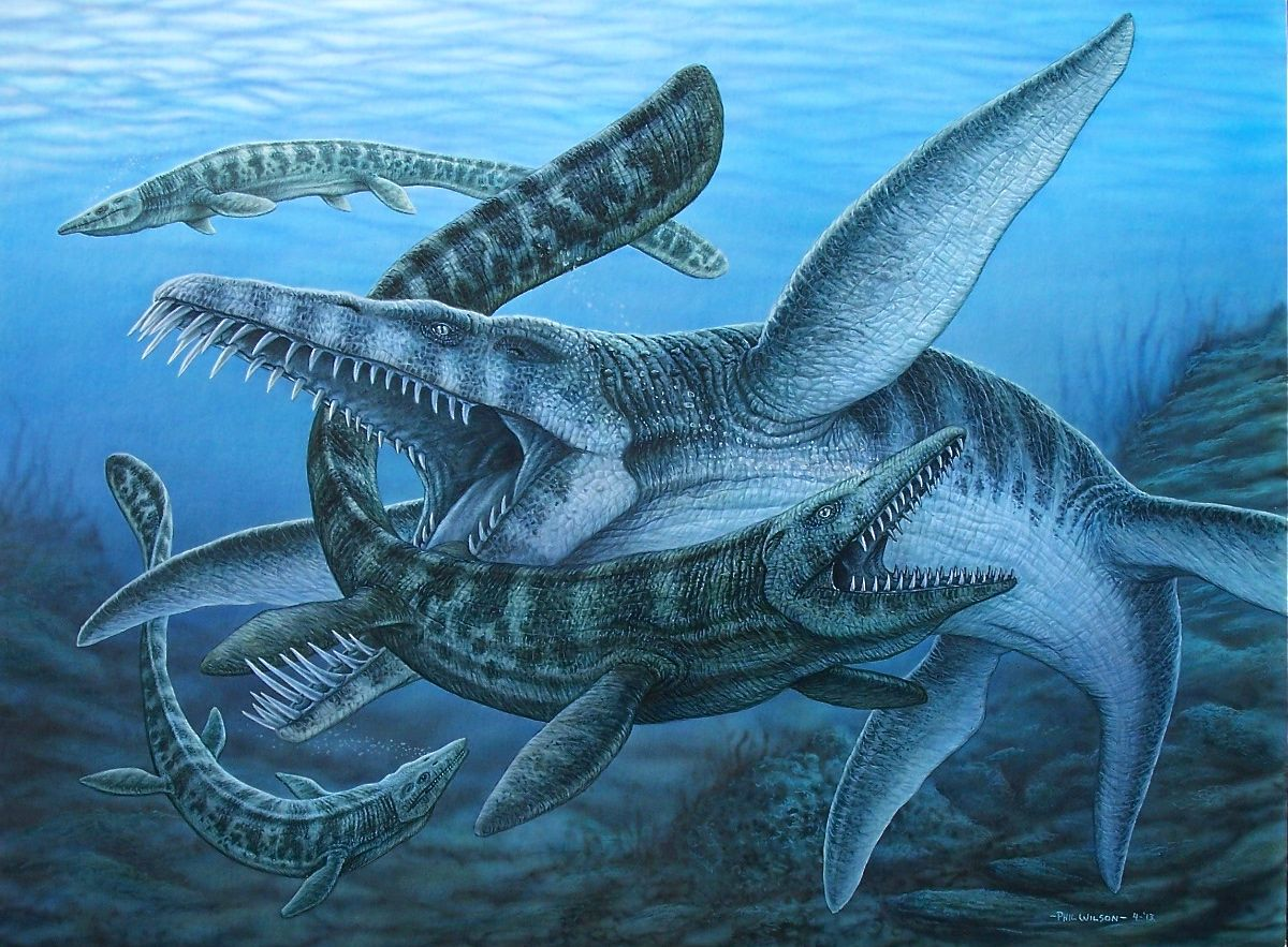 Liopleurodon painting Prehistoric animals, Prehistoric