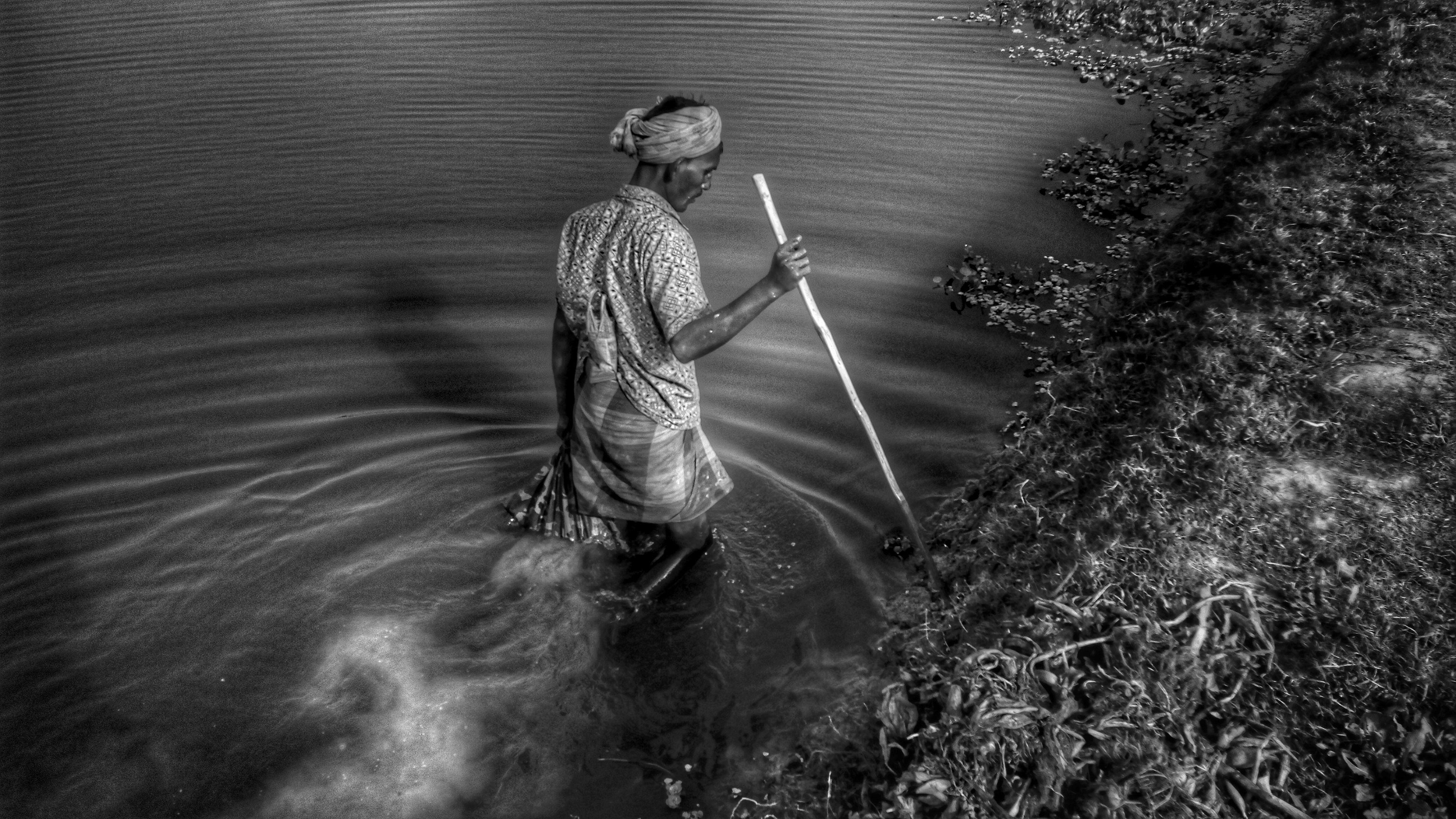 Expert Fish Hunter Searching 38402160 Hd Wallpaper Computer Wallpaper Wallpaper