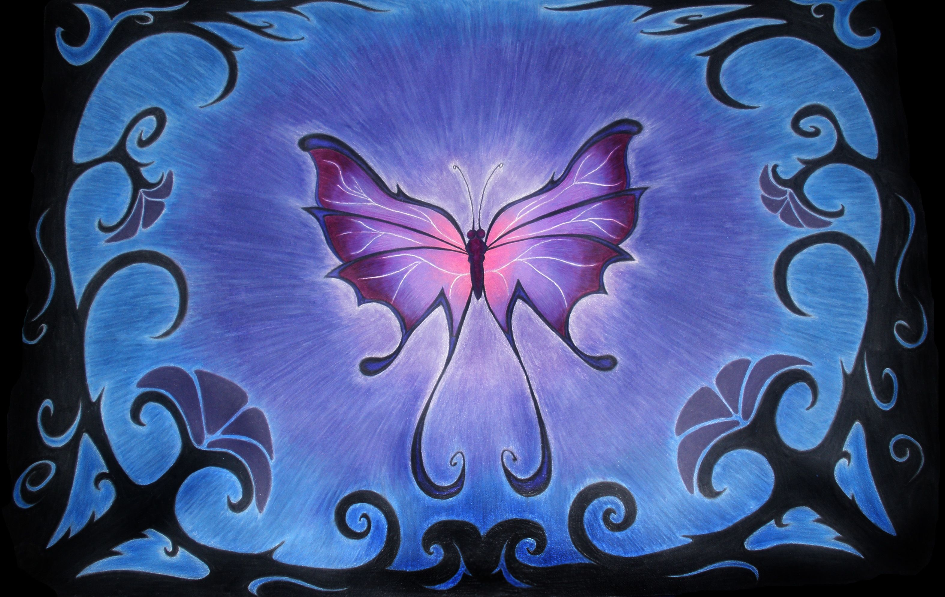 """Butterfly - Kelly Wood (colored pencil) 15""""x20"""""""