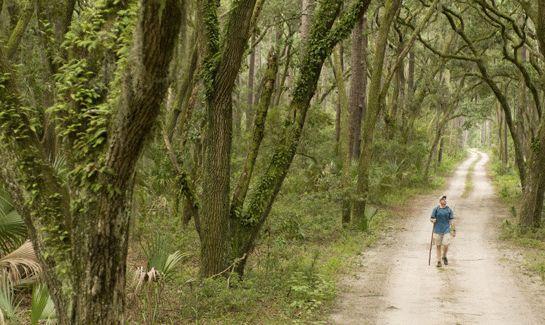 River Road Preserve at Palmetto Bluff