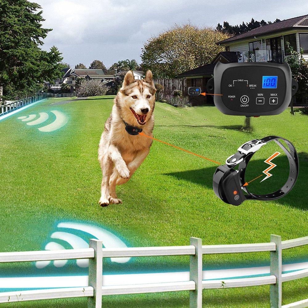 Rechargeable Waterproof Pelatihan Anjing Collar terlihat