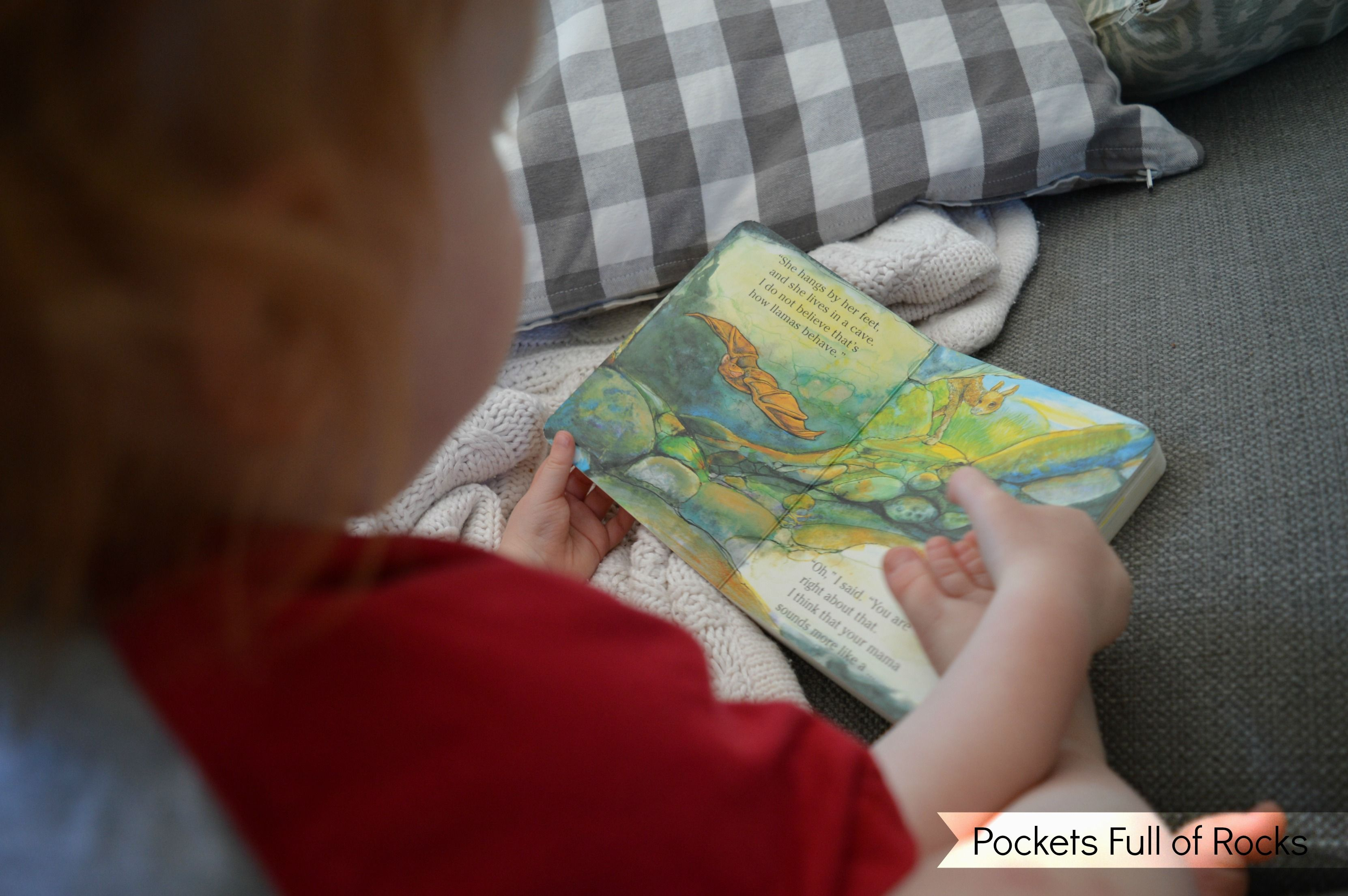 Our Favorite Animal Books for Preschoolers