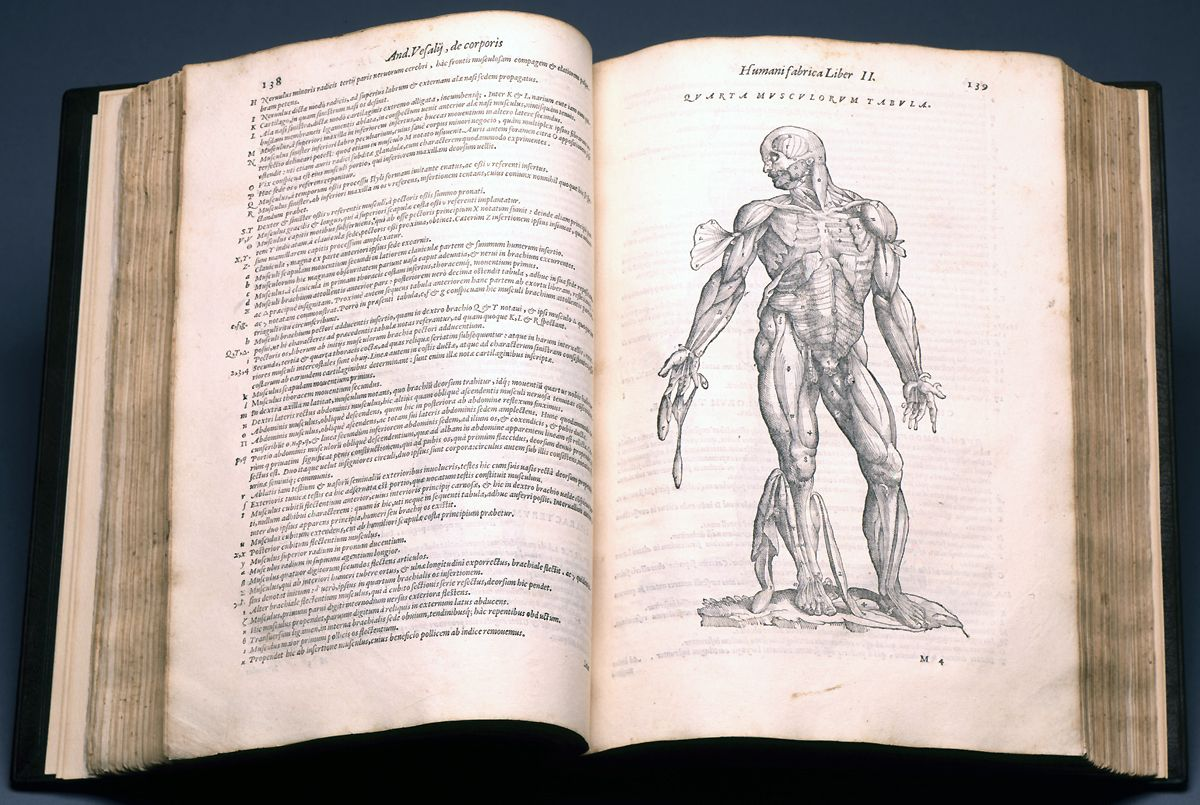 Andreas Vesalius Achievements