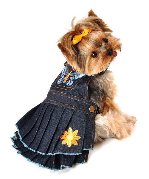 Look at this Blue Butterfly Denim Dog Dress on #zulily today ...