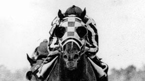 Secretariat wins the Preakness at Pimlico on the way to the Triple Crown (1973)