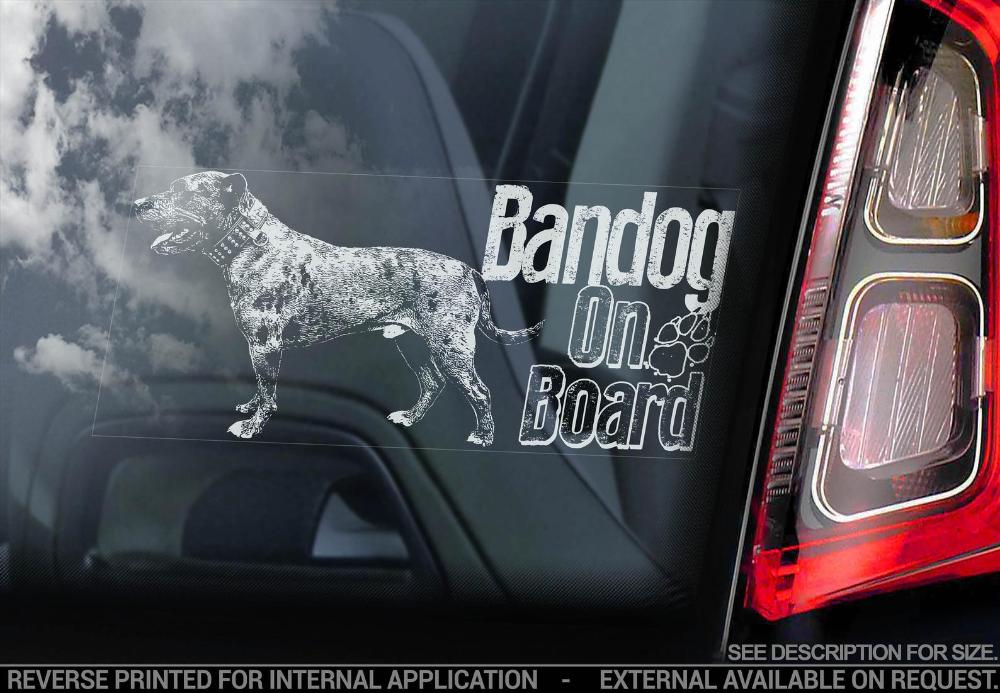 Bandog on Board Car Window Sticker Beware of the Dog