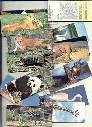 Chocolate Surpresa e os animais.. Tenho uma coleção destes até hoje.