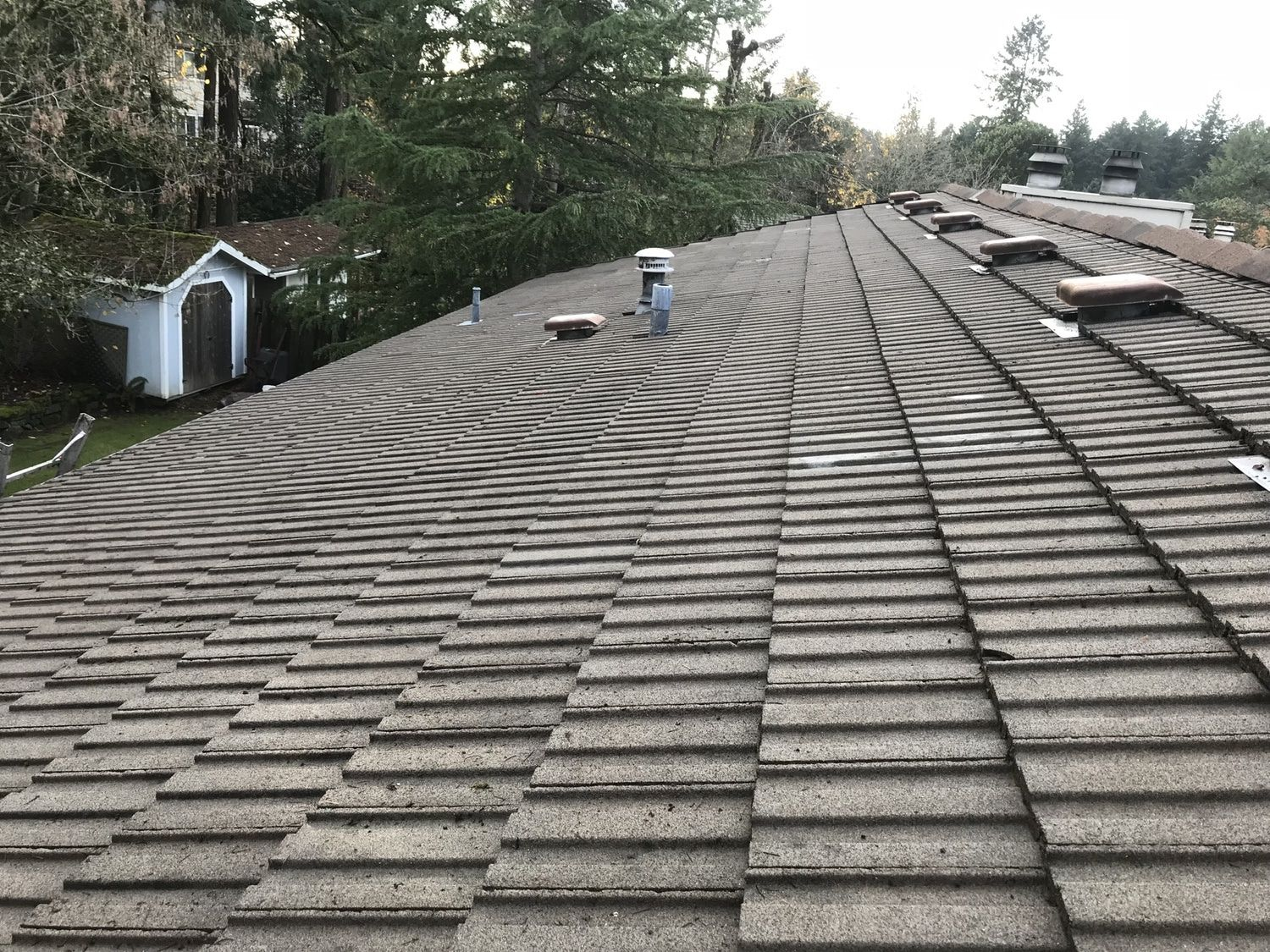 Cleaning Concrete Roof Tiles Di 2020