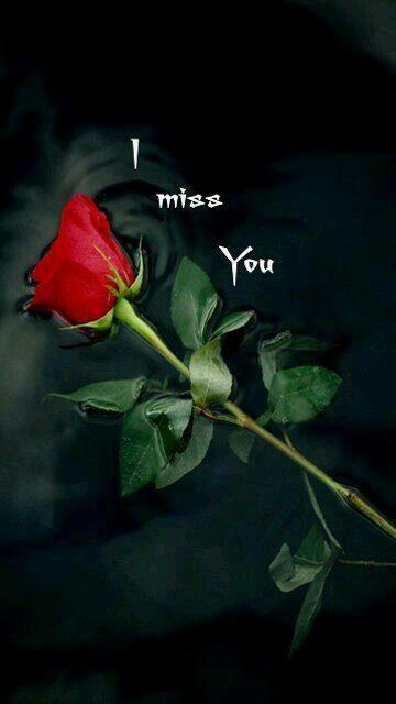 To my dear Joe ♡♡♡, l miss you♡.