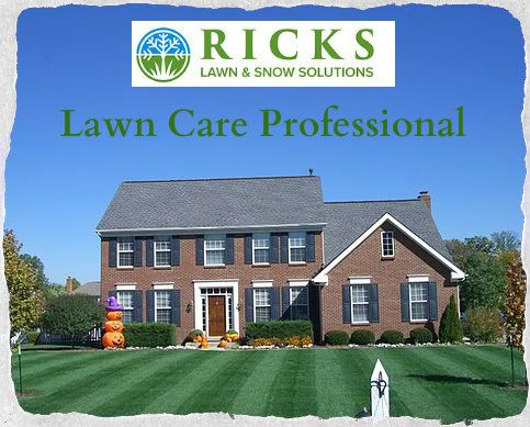 Ricks Lawn & Snow Solutions offer best Lawn Care & Fertilizer. To ...